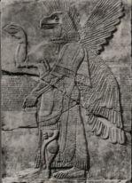 Assirie génie aile a tete d'aigle