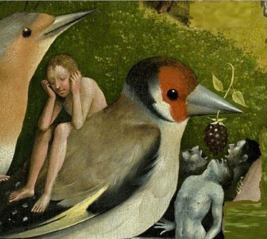 bird2s