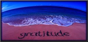 gratitude ee